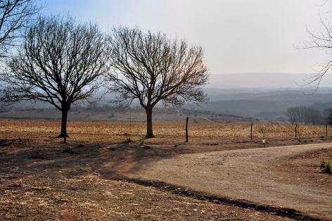 Valle de Calamuchita