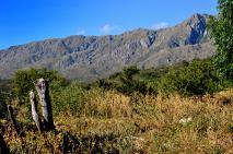Cerros