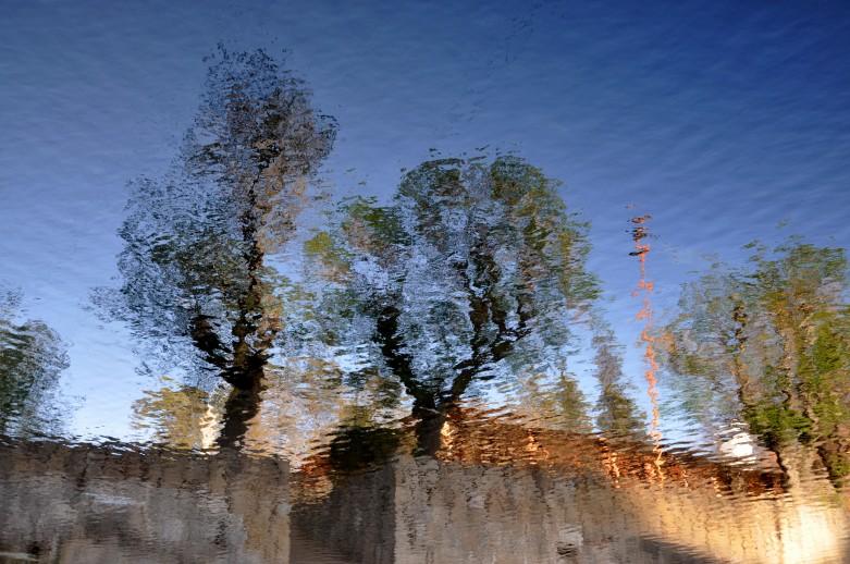 Monet en el Diquesito
