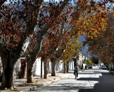 Calles de Cafayate