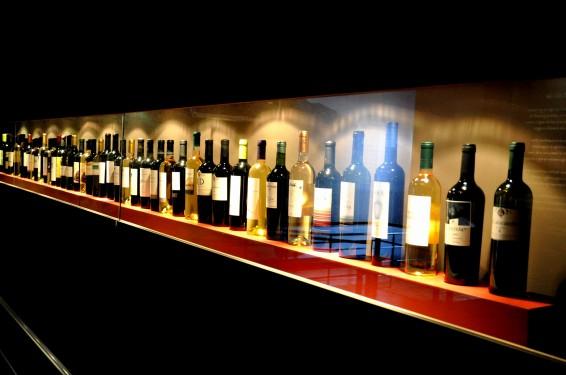 El vino -Museo del Vino-