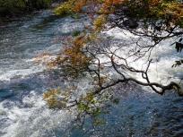 Cataratas del Iguazú foto 2