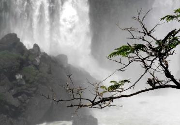 Cataratas del Iguazú foto 5