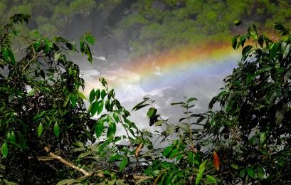 Cataratas del Iguazú foto 6