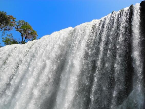 Cataratas del Iguazú foto 8