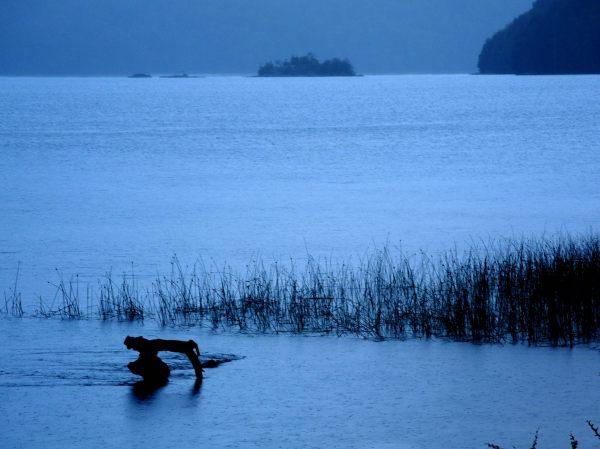 Azul en camino de los 7 lagos, Neuquén