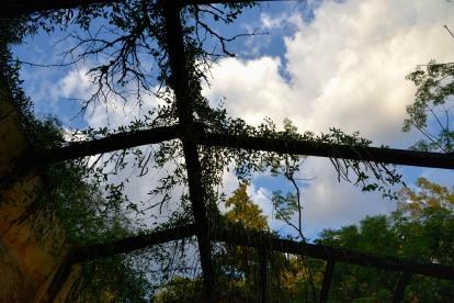 Mirando el cielo desde la tapera