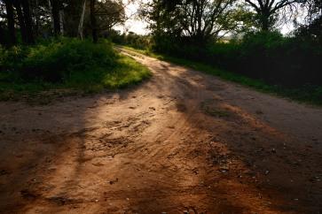 Nuevo día en el camino