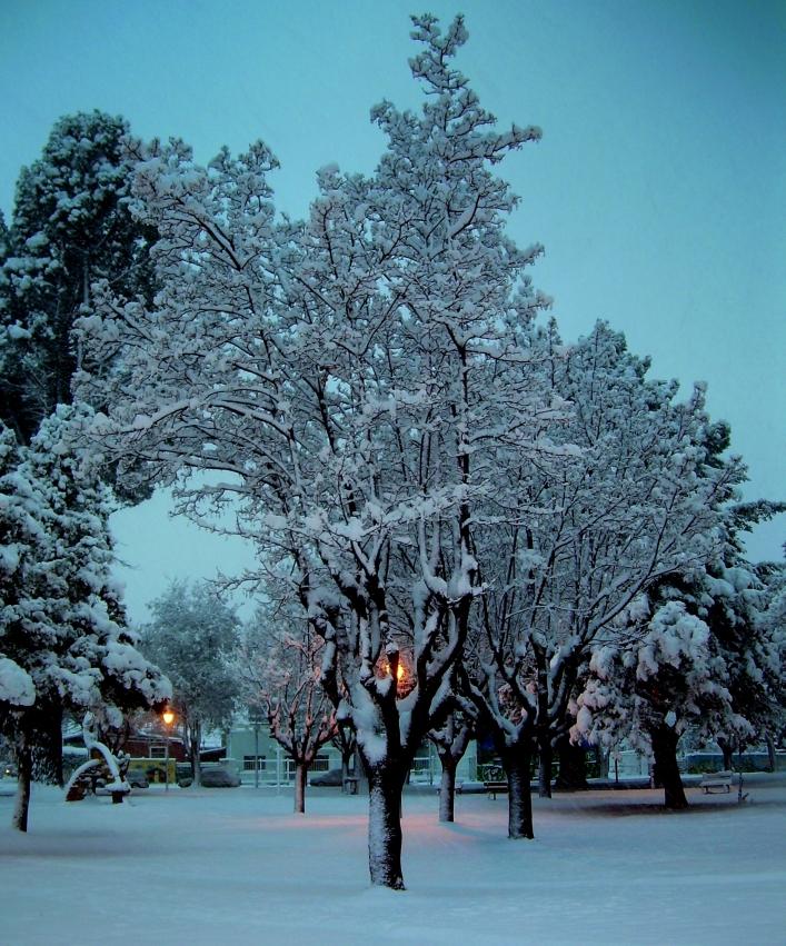 Nieve en Plaza de Esquel 1