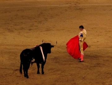Torero y toro en la arena