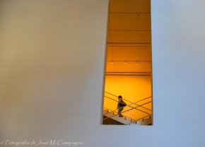Imagen interior del MoMA