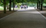 Camino pedestre de acceso