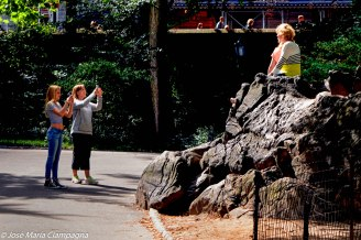 Foto recuerdo Central Park