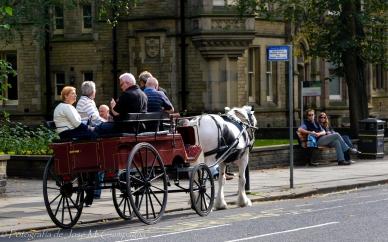 Mateo en las calles de York