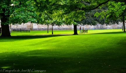 El parque de la catedral de York