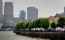 Camino a Greenwich (2)