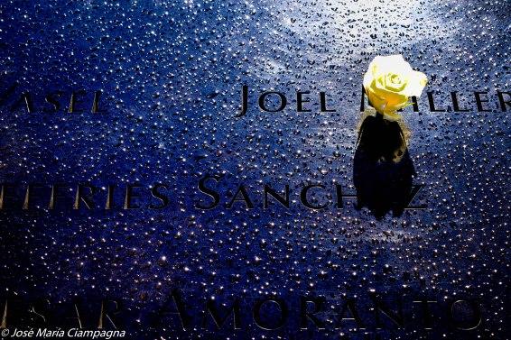 Una rosa para Joel