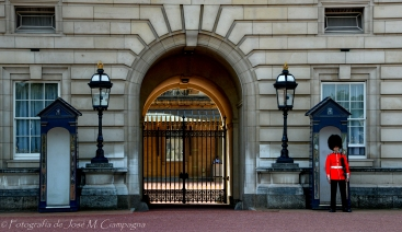Guardia en Buckingham Palace