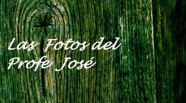 Las fotos del Profe José