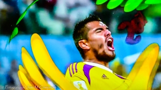 Mundial fútbol 2014 fotografía 5